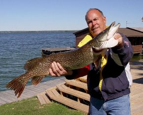 R. Karl with 36-inch, 16 pouind pike caught on Lake Kabetogama, MN
